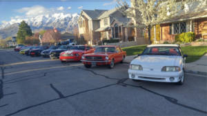 Mustangs parked on street