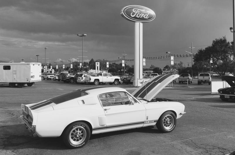 67 GT350 Ed Kenley Ford